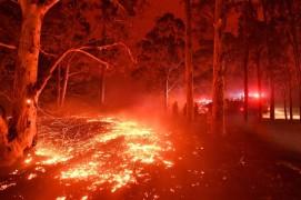Пожарите в Австралия предизвикаха вълна от съчувствие и у нас, но най-вече само на думи.